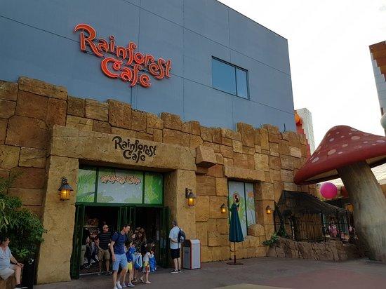 Rainforest Café : Rainforest Cafe