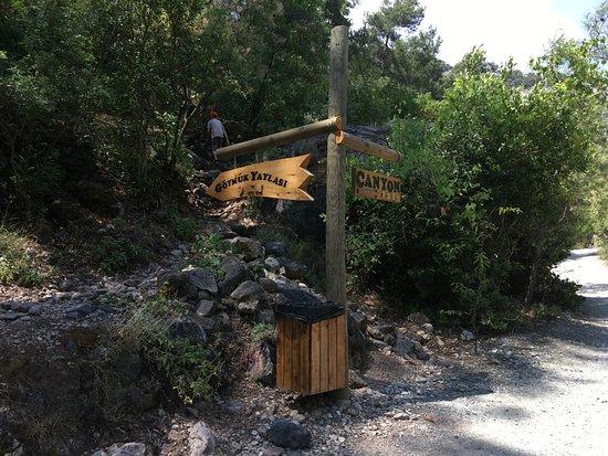 Goynuk Canyon: Ещё указатель, слабая тропа уходит в заросли