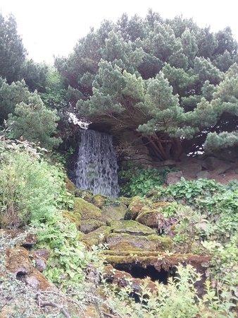 爱丁堡皇家植物园照片