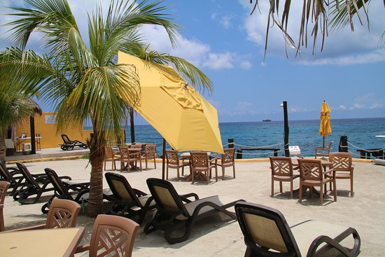 Sea Trek Cozumel: Relax afterward, eat, snorkel or enjoy a cocktail right on the water
