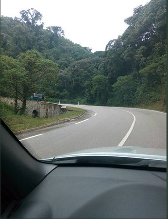 New Horizon Tours and Services: Inside Nyungwe. You will be with us along the way