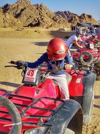 El Sherif Safari Photo
