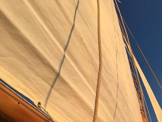 Whistling Man Schooner Company: Glow on sails
