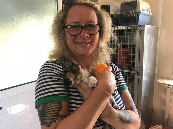 Kyrenia Animal Rescue: kitten and me