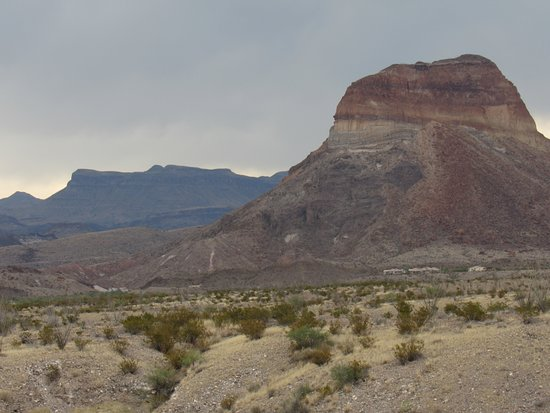 One of the pics I took in Big Bend National Park.
