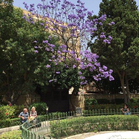 上巴拉卡花园照片
