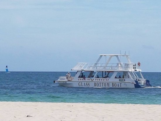 Pullman Cayo Coco: Glass Bottom Boat