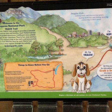 Congaree National Park: Nice