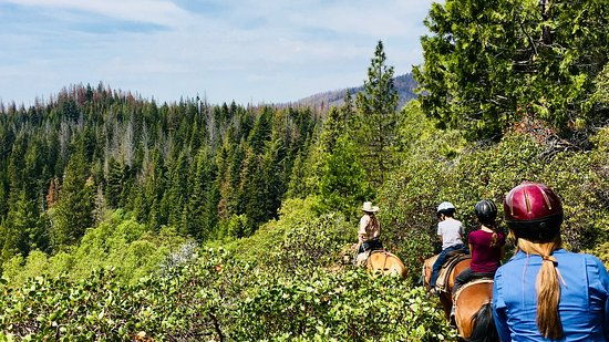 Yosemite Trails Horseback Adventures : Amazing ridgeline view (the picture does not do it justice)