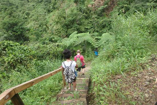 Go Local Fiji Transfers & Tours: These steps have made the hike up to the waterfalls more easy and enjoyable