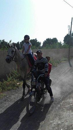 La Ferme Equestre de la Roseraie : rencontre marocaine