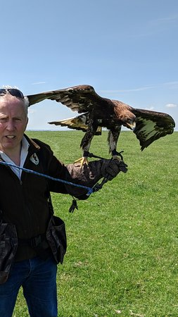 Newgrange Falconry: Brian and one of his golden eagles.