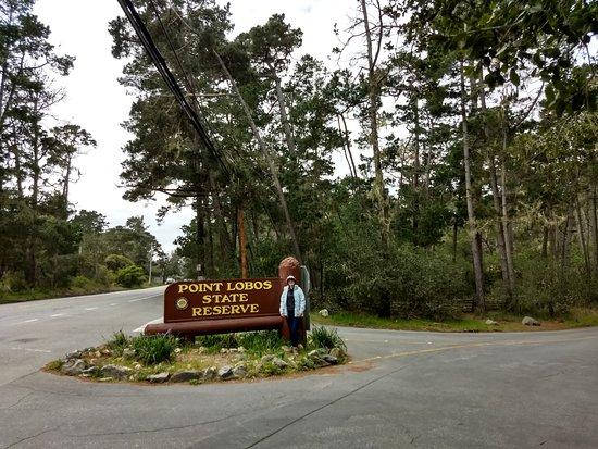 Point Lobos : Entrada do parque