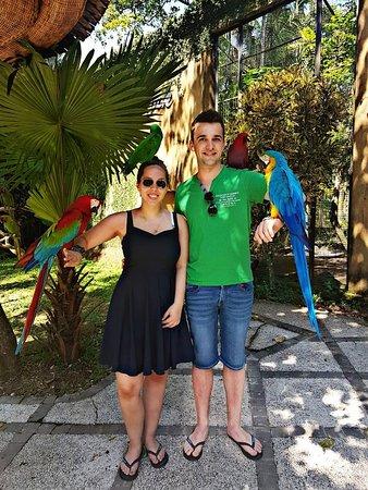 Bali Bird Park Admission Ticket ภาพถ่าย