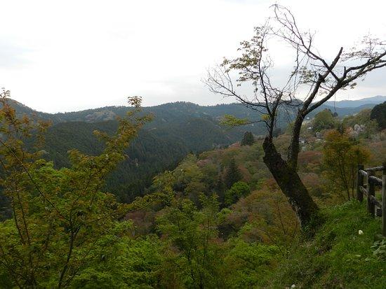 Nara Prefecture Photo