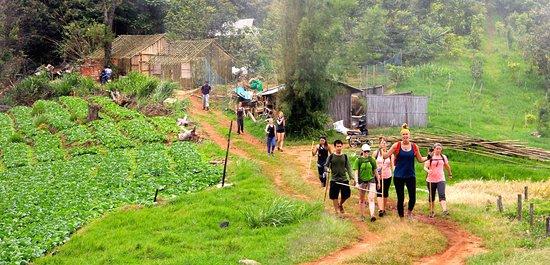 Mae Ai, Thailand: Our tourists