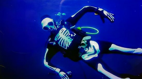 Abyss Dive Center Bali Φωτογραφία