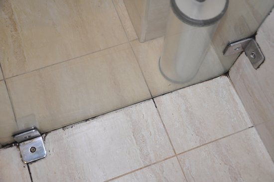 City Center Jerusalem: shower stall mold.