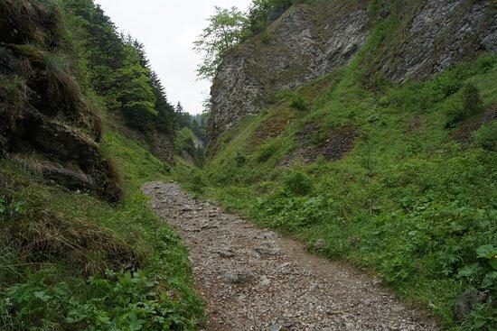 Szopczanski Gorge : Początek wąwozu