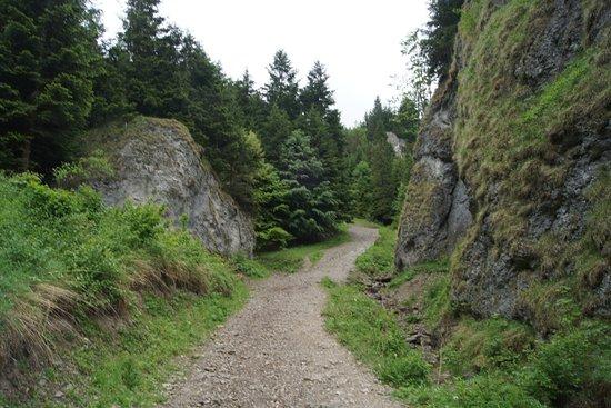 Szopczanski Gorge : Widoczne łagodne podejście