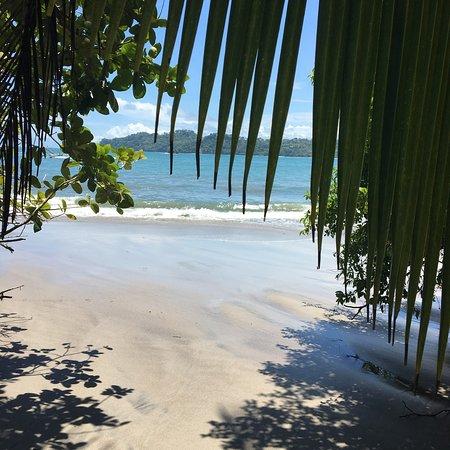 Foto Playa Manuel Antonio