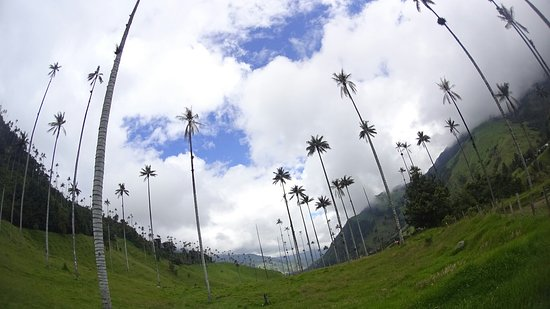 Quindio Department, Kolumbia: PICT_20180529_105323_large.jpg
