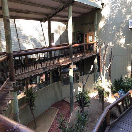 Daisy Hill, Australie : photo5.jpg