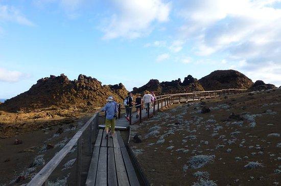 Bartolome Island Ganztagesausflug mit...