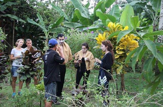 Granja orgánica Costa Rica Descens
