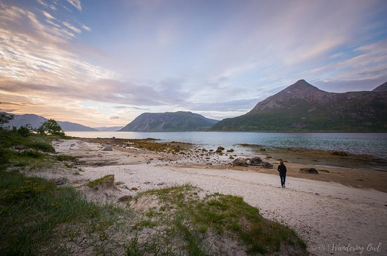 5-Day Self-Drive-Tour Northern Norway ...