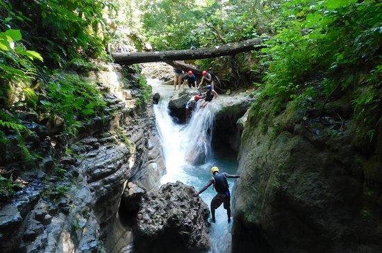 Excursion à terre: Les 27 cascades de...