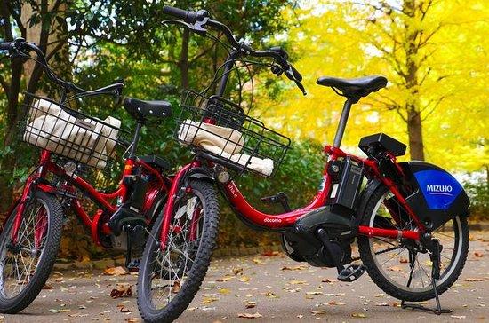Tokyo Exclusive Electric Bike Tour