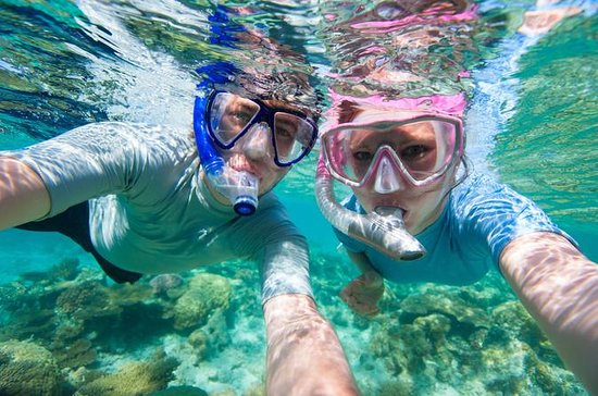 Privat Rincon Snorkeling Adventure