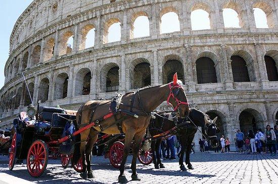 Fast Track Vatican & Flexi Colosseum...
