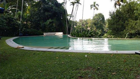 The Kandy House: Infinity pool