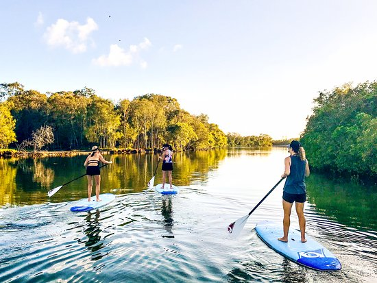 Stand up paddling with Action Outdoor Hire at Tallebudgera Creek