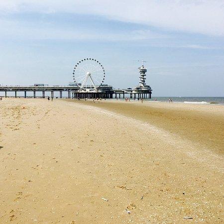 Carlton Beach-bild
