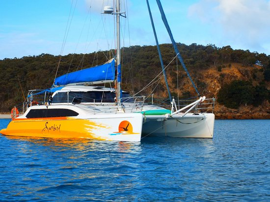 Sunrise Sailing Charters: The Sunbird.