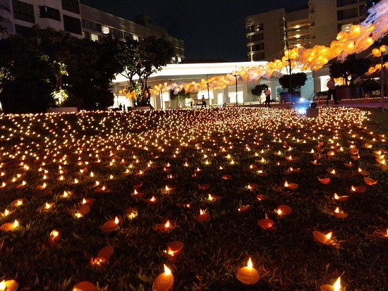 科伦坡肉桂树大酒店照片