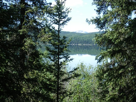 Dease Lake, Canada: The view from another site.