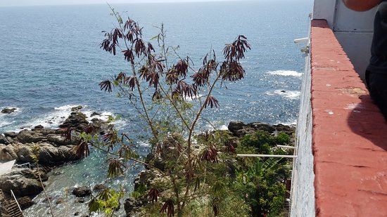 Casa Carole: This is the top view from street level to the ocean!