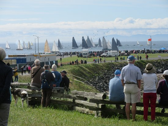 Beacon Hill Park: Swiftsure yacht race at South end of park