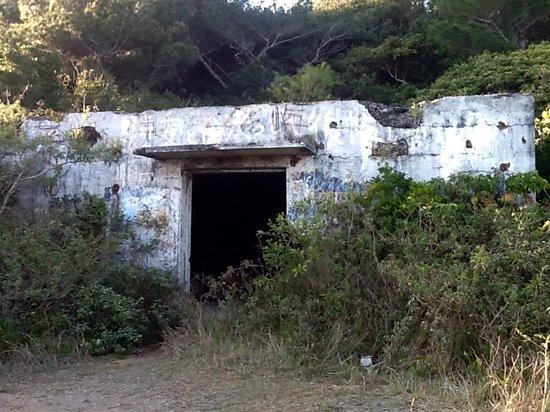 Hatsuneura Observatory
