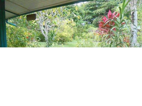 La Diguoise Guesthouse : Vue de la chambre Passion