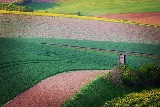 Moravia, República Checa: поля Моравии