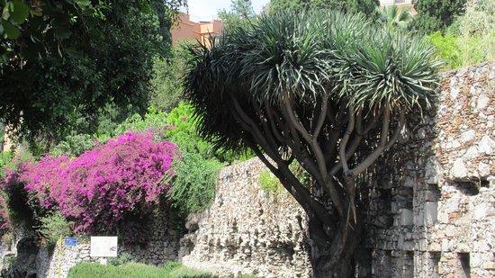 B&B Villa Maria Giovanna: Taormina