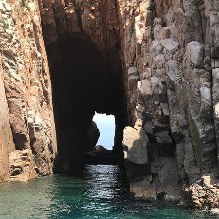 Foto Alpana Excursions en Mer Day Tours