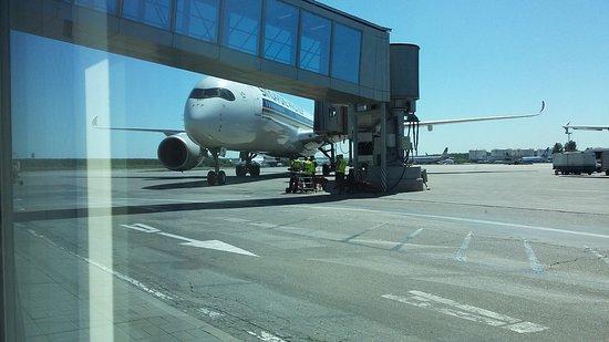 Singapore Airlines: Домодедово