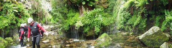Labastide-sur-Besorgues, ฝรั่งเศส: Végétation luxuriante !!!