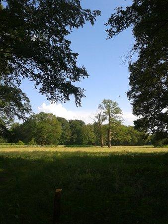 Kasteel de Haere: Prachtige natuur bij Landgoed De Haere en de IJssellinie bij Olst